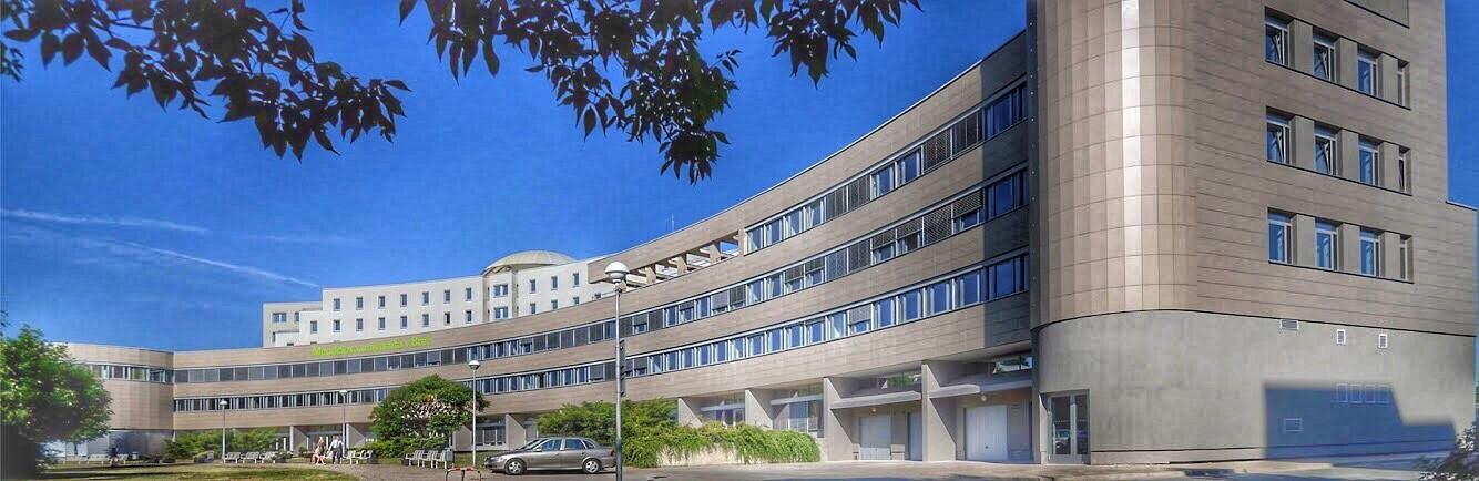 Fakulta regionálního rozvoje a mezinárodních studií (FRRMSMENDELU)