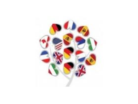 Mezinárodně uznávané certifikáty nově na FMV