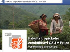 Fakultní facebook