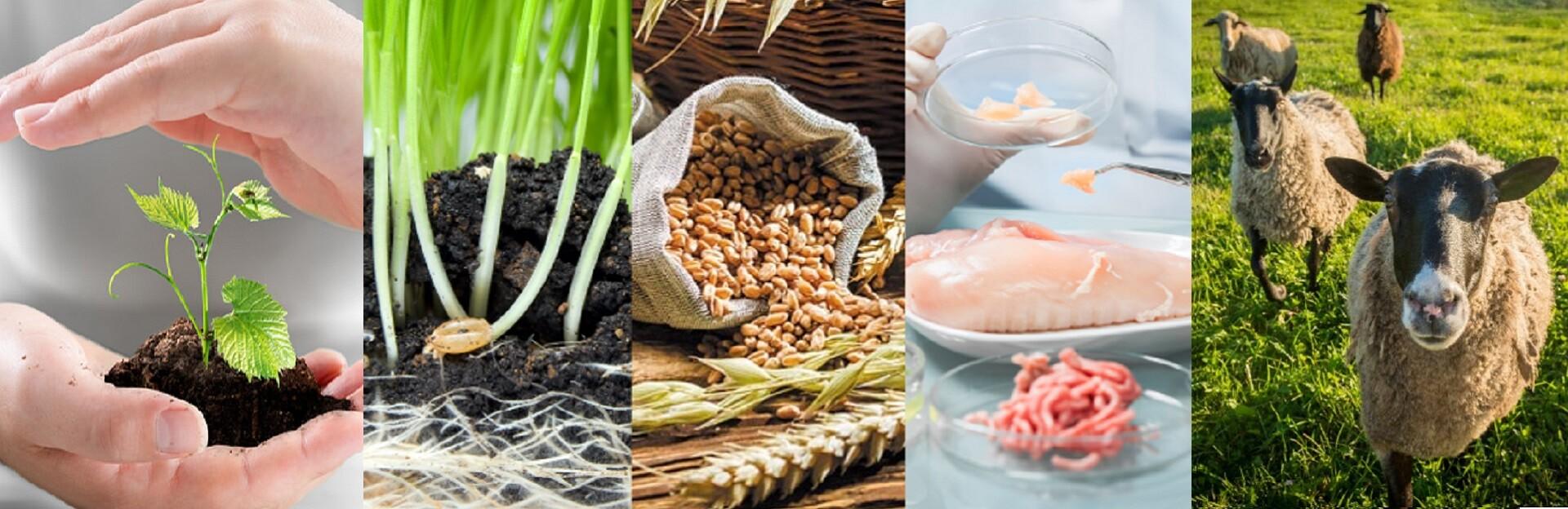Fakulta agrobiologie, potravinových a přírodních zdrojů (FAPPZČZU)